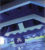 Натяжной потолок (DPS)